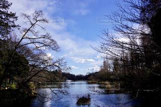 公園の写真・画像素材[374594]