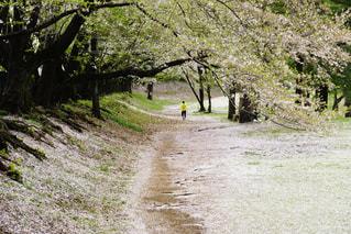 公園 - No.398029