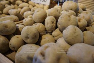 野菜の写真・画像素材[384789]