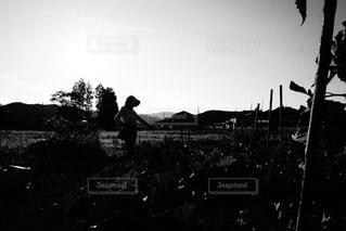 モノクロの写真・画像素材[421702]