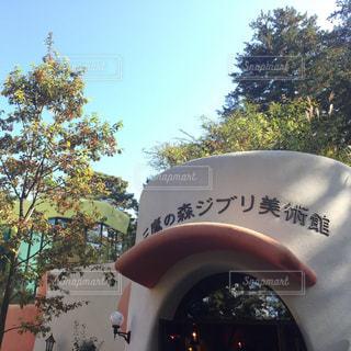 東京の写真・画像素材[320145]