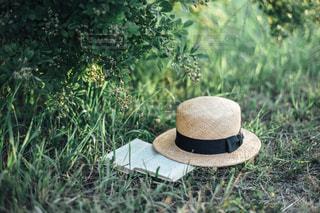 麦わら帽子の写真・画像素材[1286900]
