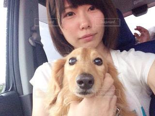犬の写真・画像素材[535510]