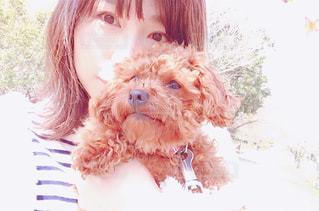 近くに犬のアップの写真・画像素材[1119554]