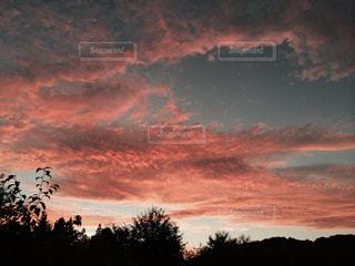 空の写真・画像素材[318192]