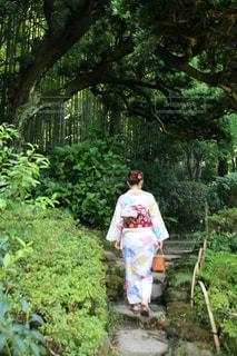 鎌倉での一枚 🍃の写真・画像素材[1353624]