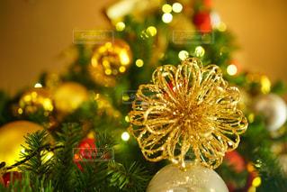 クリスマスツリーの写真・画像素材[2818824]