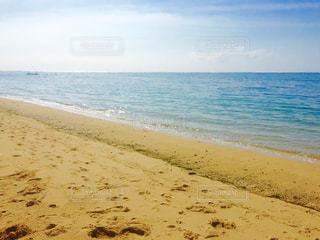 海の写真・画像素材[318623]