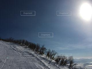 冬の写真・画像素材[318772]