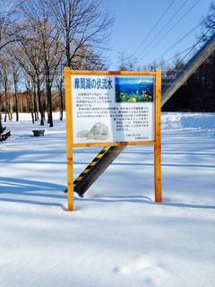 冬の写真・画像素材[318630]