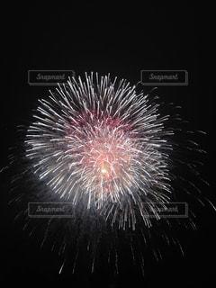 花火の写真・画像素材[325963]
