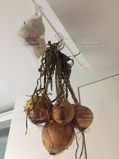 玉ねぎの保存法の写真・画像素材[1014985]