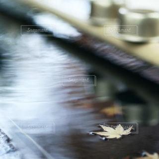 自然の写真・画像素材[3067]