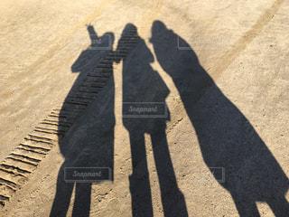 砂浜の写真・画像素材[320076]