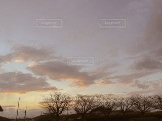 自然の写真・画像素材[320084]