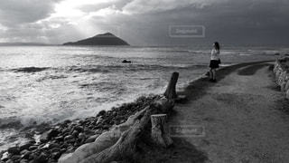 自然の写真・画像素材[320090]