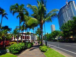 ハワイ - No.320441