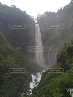 自然の写真・画像素材[320037]