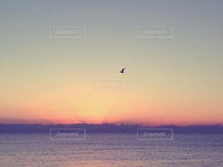 夕景の写真・画像素材[320132]