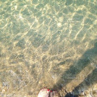 透き通った海の写真・画像素材[1046551]