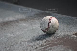 スポーツ - No.323595