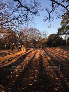 公園 - No.321111