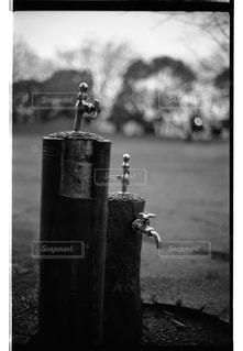 公園の写真・画像素材[322102]