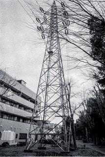 白黒の写真・画像素材[325397]
