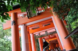 京都の写真・画像素材[321604]