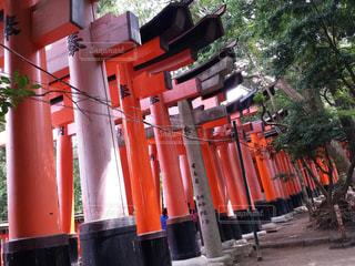 No.321605 京都