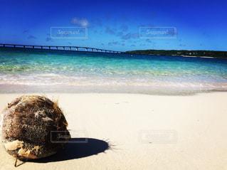 海の写真・画像素材[555338]