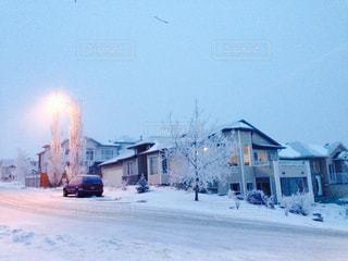 雪の写真・画像素材[321741]