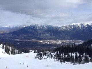雪の写真・画像素材[321745]
