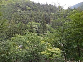 No.322210 風景