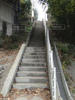 階段の写真・画像素材[324167]