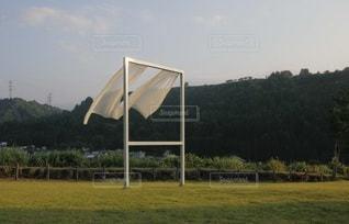 自然の写真・画像素材[9254]