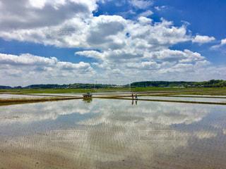 雲の写真・画像素材[463559]