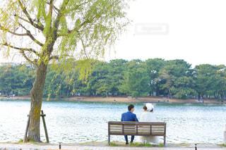 女性,男性,20代,30代,自然,公園,二人組,カップル,湖,森,後ろ姿,ベンチ,結婚式,花嫁,池,ドレス,仲良し,リボン,ウェディングドレス,夫婦,結婚,ウエディング,新郎,新婚,ウェディング,ウエディングドレス,2人