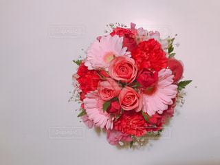 花の写真・画像素材[323277]