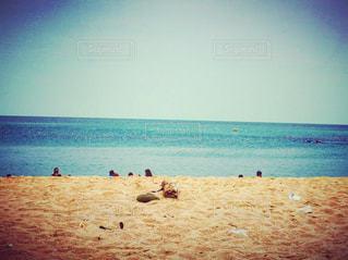 海の写真・画像素材[323934]