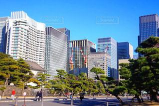 東京の写真・画像素材[323972]