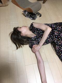 猫の写真・画像素材[656916]