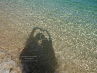 風景の写真・画像素材[335003]