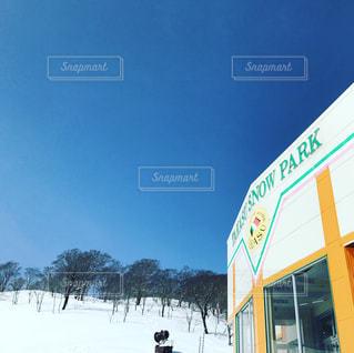 冬の写真・画像素材[431867]