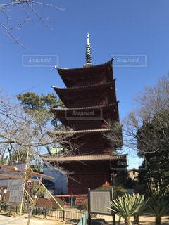 五重塔の写真・画像素材[329102]