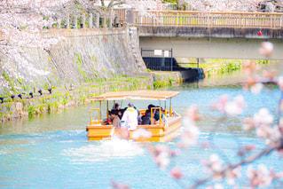 桜と屋形舟の写真・画像素材[3083113]