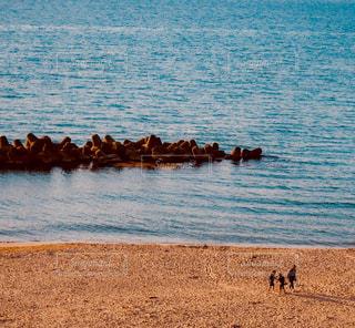 砂浜を散歩の写真・画像素材[3083111]
