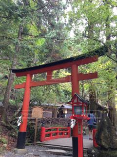 No.324669 京都