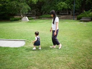 芝生をお散歩の写真・画像素材[2242727]