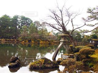 風景の写真・画像素材[331691]